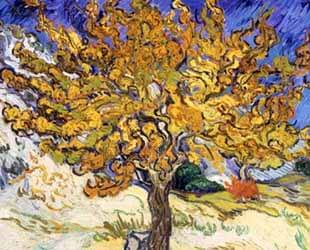 The Mulberry Tree in Autumn, c.1889 by Vincent Van Gogh