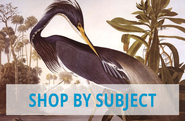 Shop Art by Subjects