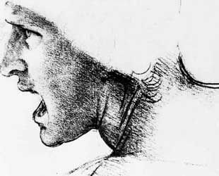 Study for the head of a soldier in 'The Battle of Anghiari' by Leonardo Da Vinci