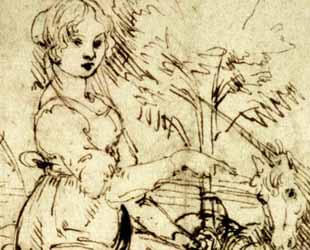 Lady with a Unicorn by Leonardo Da Vinci