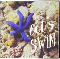 Let's Swim Fine Art Print