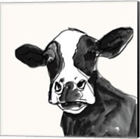 Cow Contour I Fine Art Print