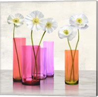 Poppies in crystal vases (Purple I) Fine Art Print