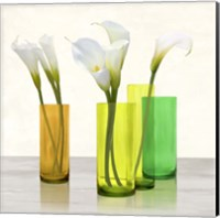 Callas in crystal vases I (detail) Fine Art Print
