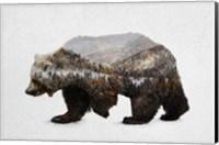 The Kodiak Brown Bear Fine Art Print