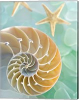 Seaglass 2 Fine Art Print