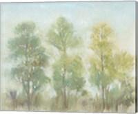 Muted Trees II Fine Art Print