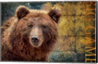 Big Game Bear Fine Art Print