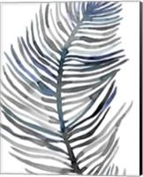 Blue Feathered Palm III Fine Art Print