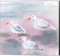 Beach Bird III Fine Art Print