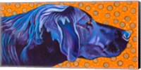 Lab With Orange Fine Art Print