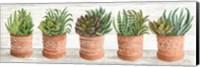 Terracotta Pots II Fine Art Print