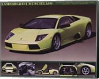 Lamborghini Murcielago Fine Art Print