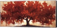 Spreading Crimson Fine Art Print