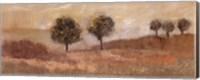 Fields of Gold II Fine Art Print