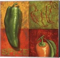 Chili IV Fine Art Print