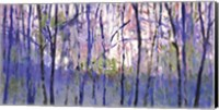 Into  The Woods Fine Art Print