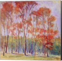 Tree Grouping II Fine Art Print