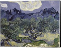 The Olive Trees, 1889 Fine Art Print