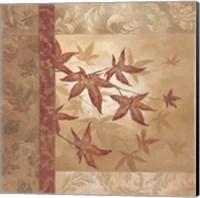 Japanese Maple I Fine Art Print