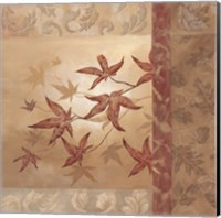 Japanese Maple II Fine Art Print