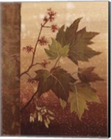 Maple Leaves Fine Art Print