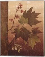 Maple Leaves - mini Fine Art Print