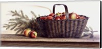 Winter Apples Fine Art Print
