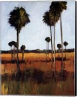 Tall Palms I Fine Art Print