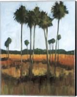 Tall Palms II Fine Art Print