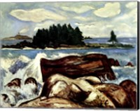 Fox Island Fine Art Print