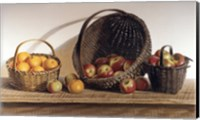 Apples and Oranges Fine Art Print