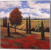 Chianti Country I Fine Art Print