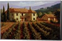 Tuscan Vineyard Fine Art Print