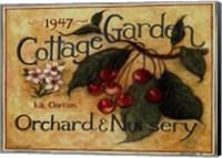 Cottage Garden III Fine Art Print