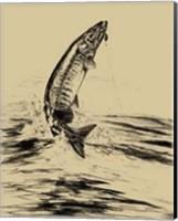 Fisherman's Delight III Fine Art Print