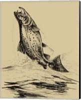 Fisherman's Delight IV Fine Art Print