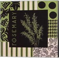 Herbal Zest I Fine Art Print