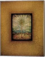 Palma di Terra I Fine Art Print