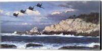 Shorebirds at Point Lobos Fine Art Print