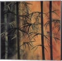 Bamboo Groove I Fine Art Print