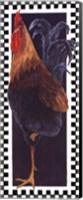 Slim Chicken II Fine Art Print