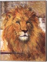 The Lion Fine Art Print