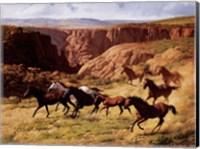 Canyon Mustangs Fine Art Print
