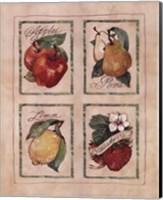 Vintage Fruit Fine Art Print