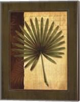 Palm Tropical I Fine Art Print
