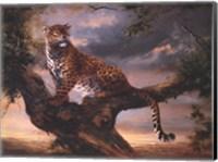 Leopard In Tree Fine Art Print