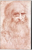 Portrait of a Bearded Man Fine Art Print