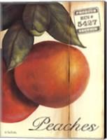 Organic Peaches Fine Art Print
