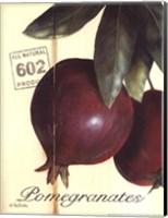 Organic Pomegranates Fine Art Print